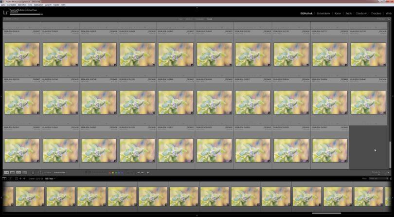 Bildbearbeitung in Adobe Photoshop Lightroom