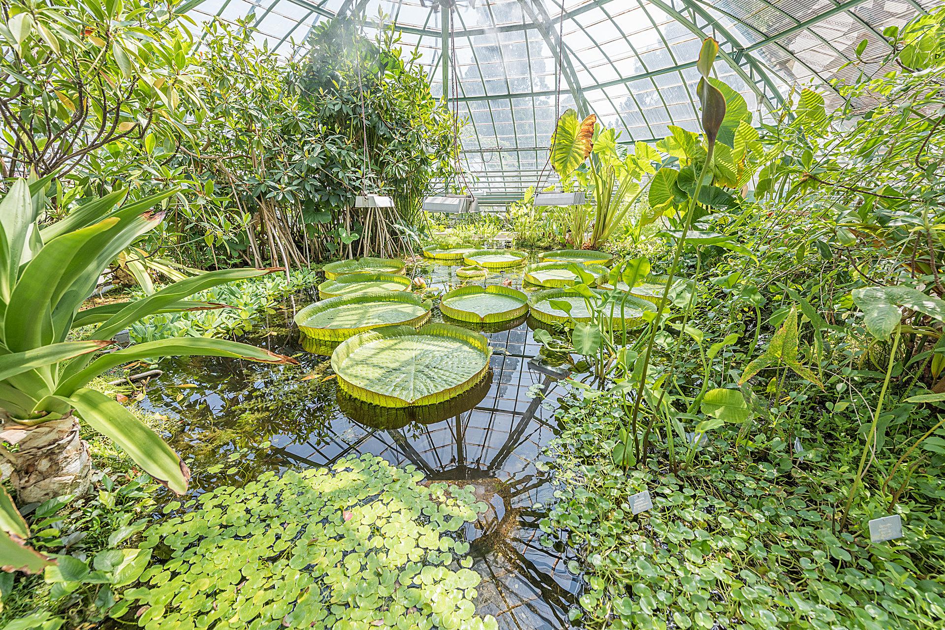 Botanischer-Garten-Basel
