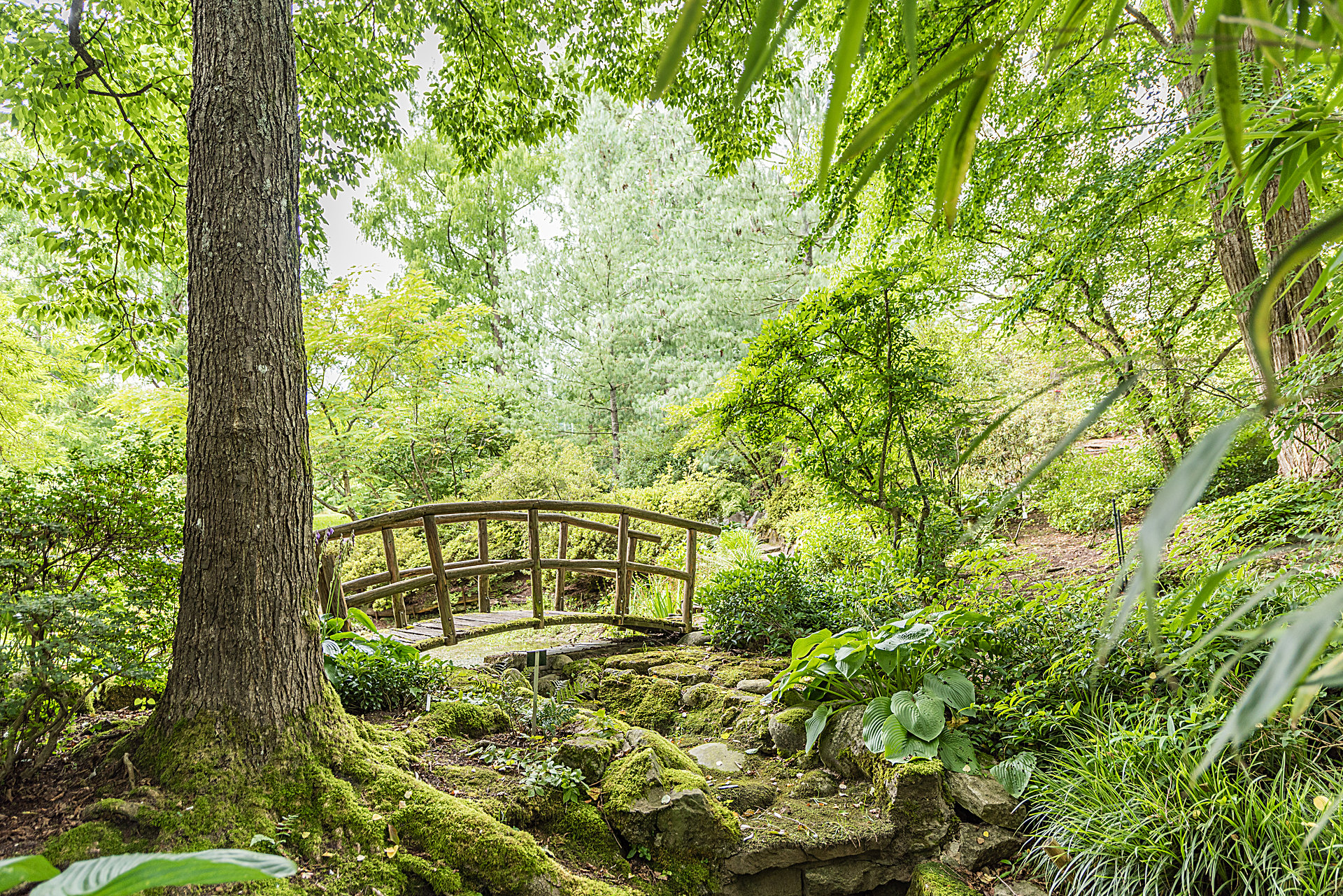 Botanischer-Garten-Tuebingen