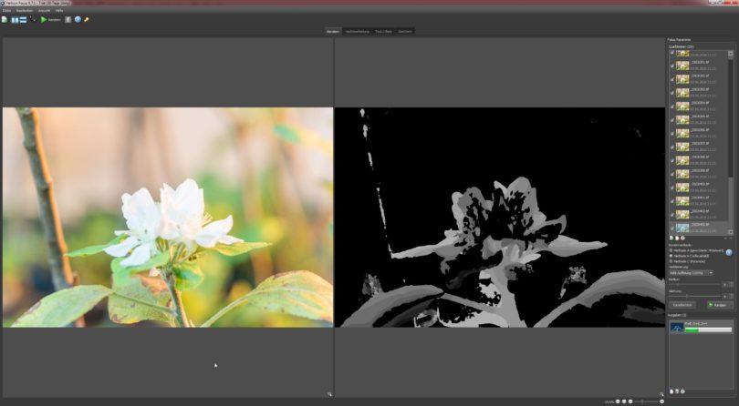 Die Stacking-Software Helicon Focus beim rendern der Fotos
